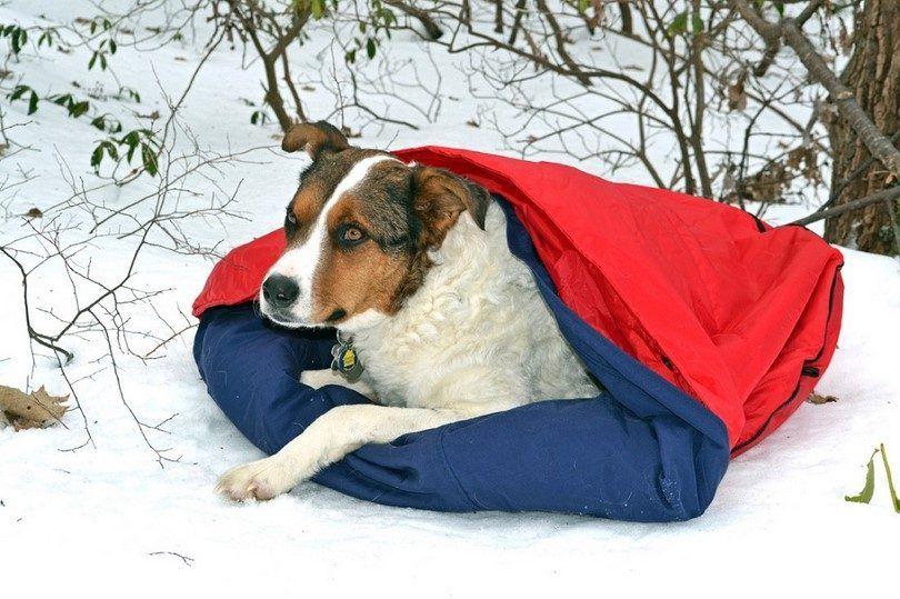 saco de dormir Noblecamper