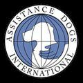 La certificaciГіn de entrenador de perros - IDA: una guГa para principiantes