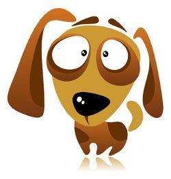 El entrenamiento del perro de ansiedad por separación