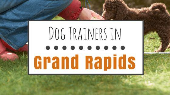 El entrenamiento del perro en grand rapids, mi: 9 opciones de entrenamiento positivos
