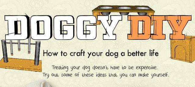 doggydiyheader
