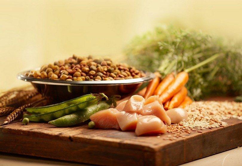 Carne y verduras comida de perro