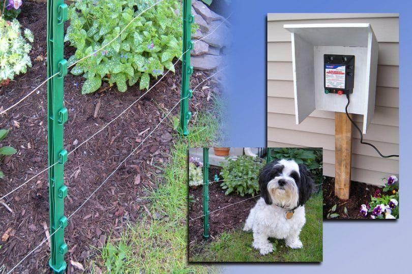 cerca eléctrica para perros