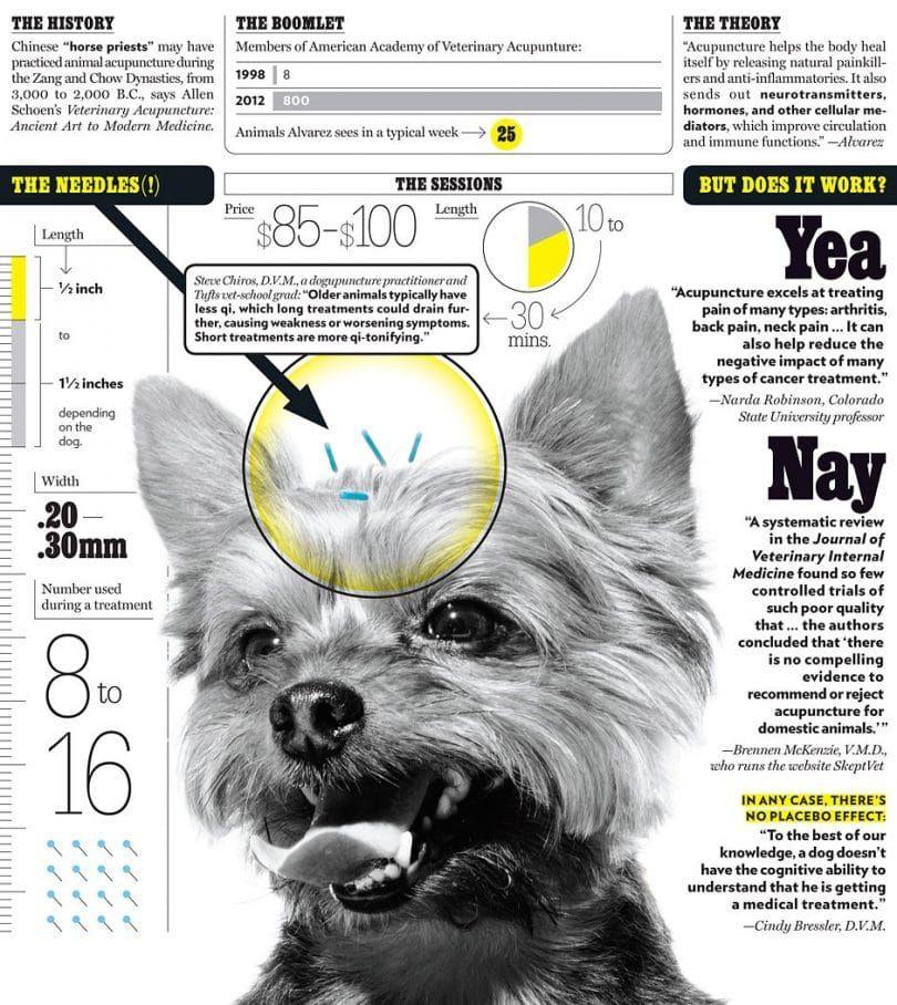inforaphic la acupuntura