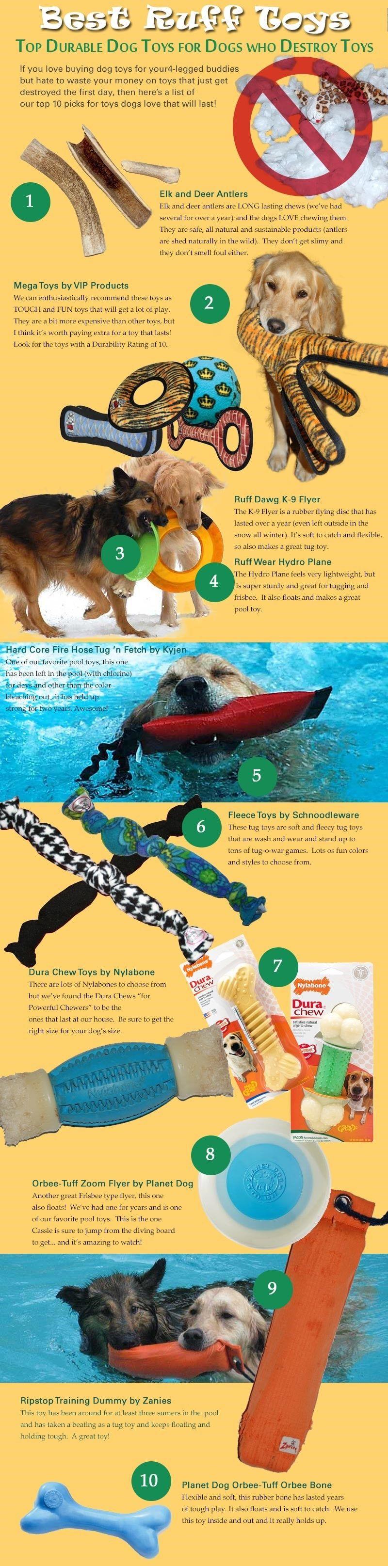 juguetes para perros infografía