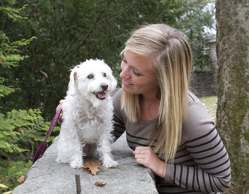 Mujer jugando con un cachorro