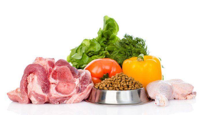 Alimentos para perros caros marcas