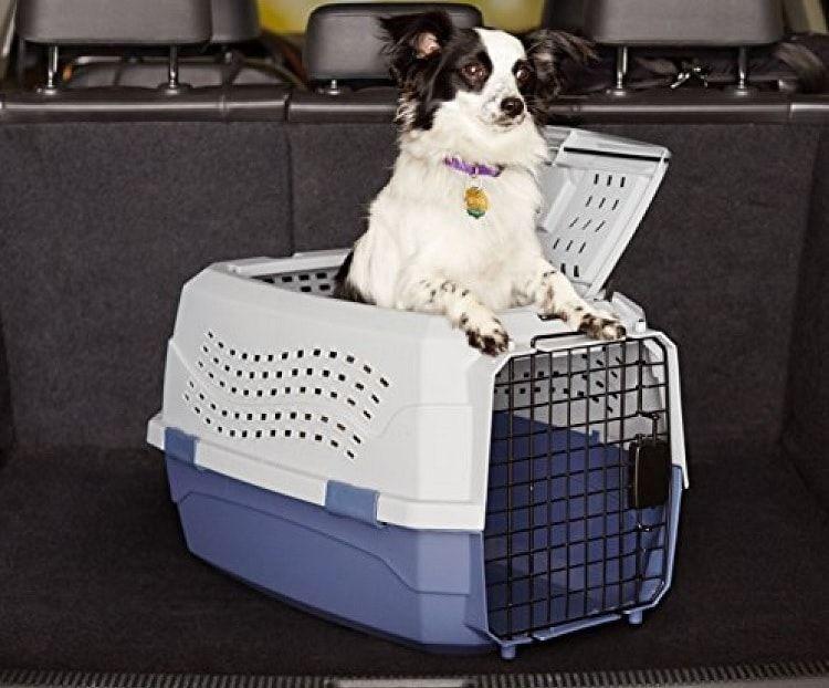 Petmate de dos puertas de carga superior de 24 pulgadas del animal doméstico de la perrera