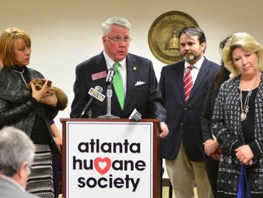 Georgia legisladores voten sobre un perro del estado - y no es lo que se espera!