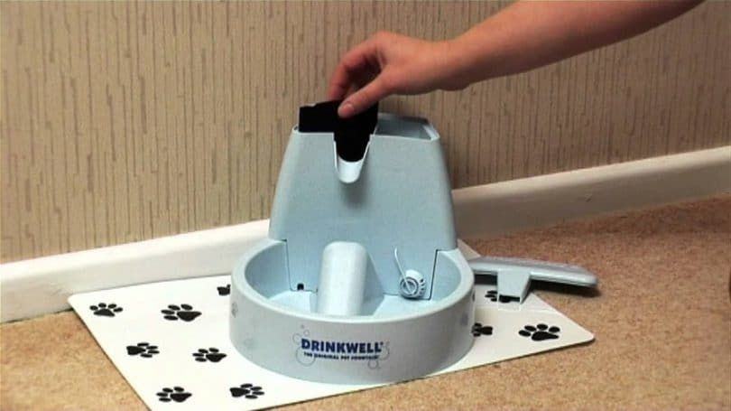 PetSafe Drinkwell Pet Fuente original