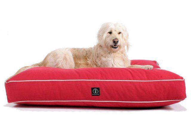 Harry Barker Fabricantes productos ecológicos para el perro