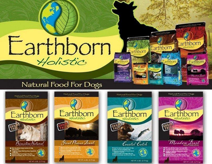 Earthborn comida de perro