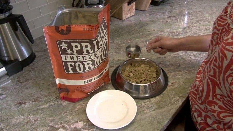 Primal comida de perro