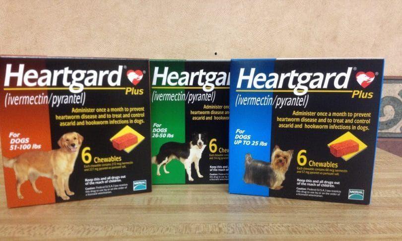 Heartgard para perros