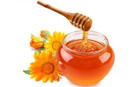 Miel para la sarna canina