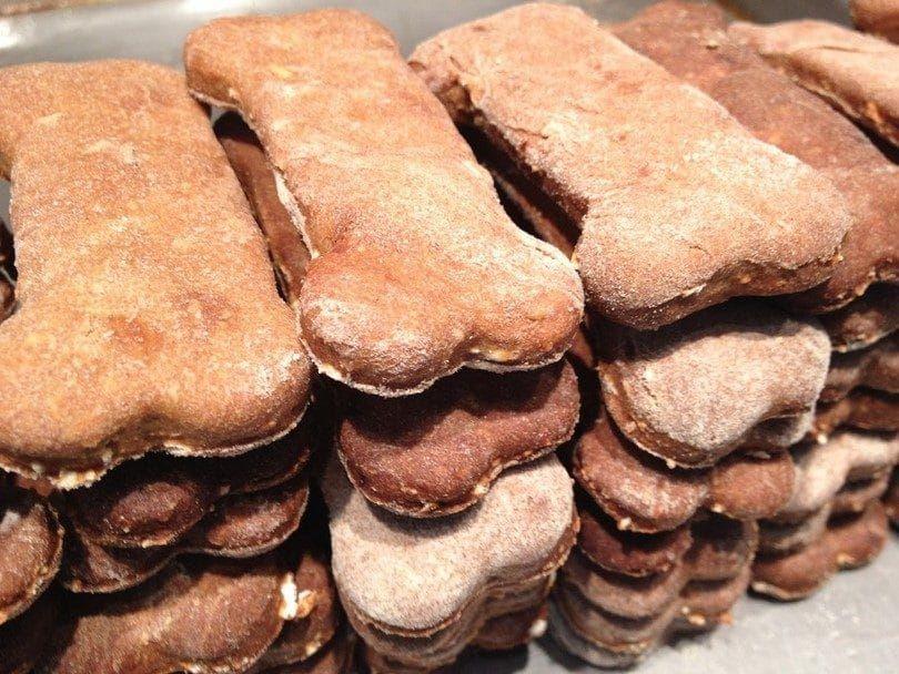 galletas para perros caseros