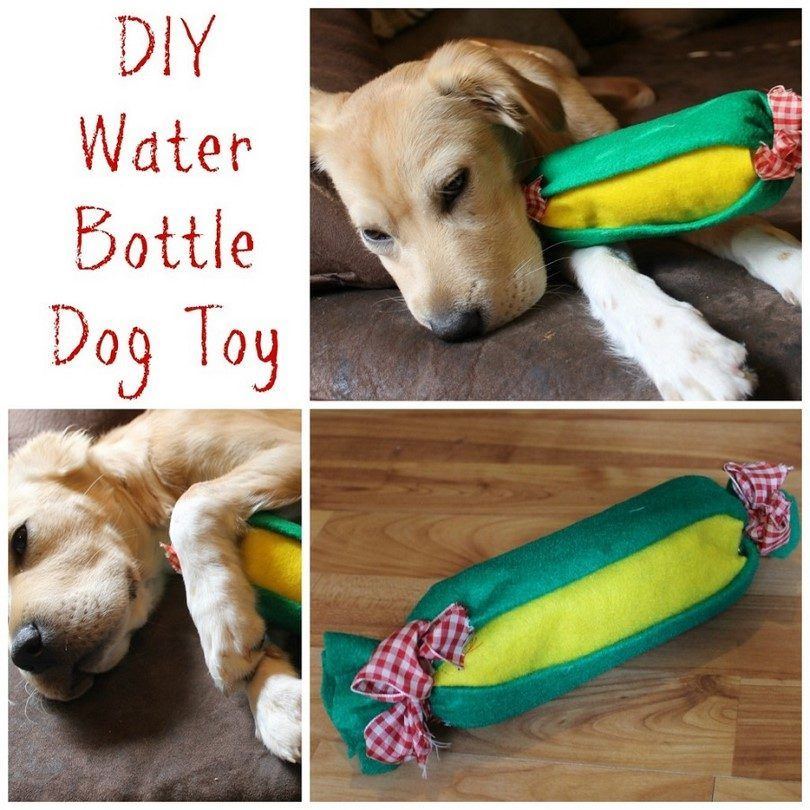 juguete para perro hecha en casa ecolГіgica