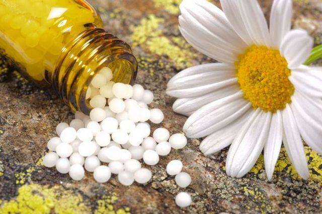 Los remedios homeopáticos y esencias florales para el bienestar físico y emocional de su perro