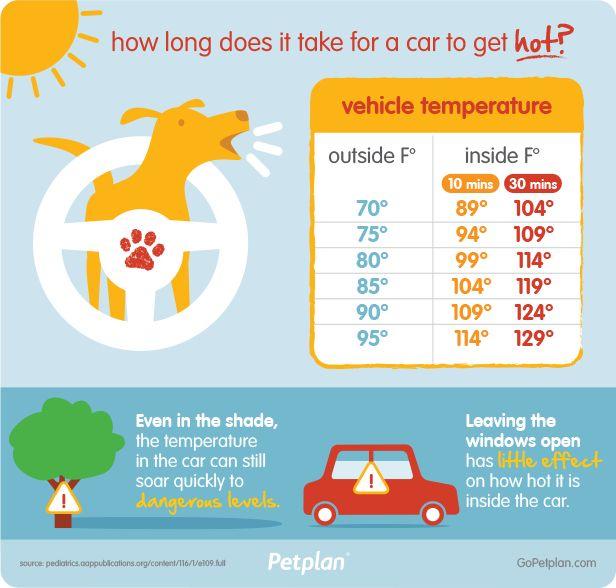 Coches calientes no son frescos! Ayudarnos a salvar vidas perros