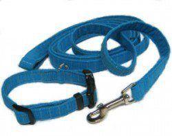 Un azul correa de perro de nylon y cuello