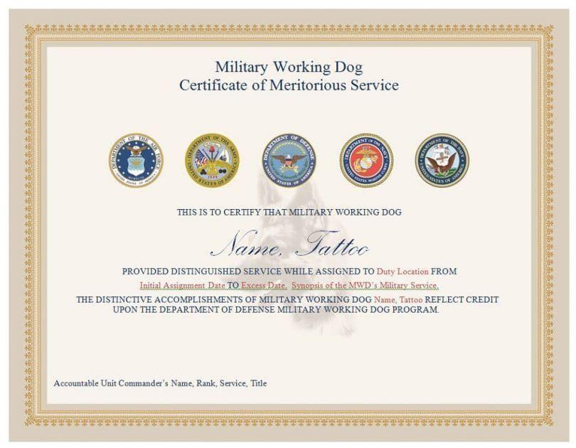 certificado de perro militar