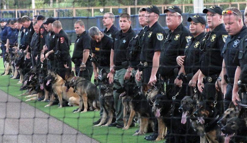 Pastores como perros policía