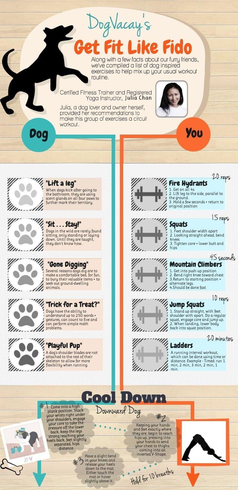 El ejercicio y el mismo perro