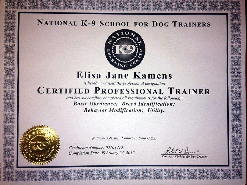 Certificación de entrenador de perros