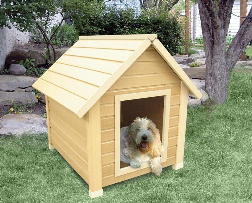 Casera perro de la casa