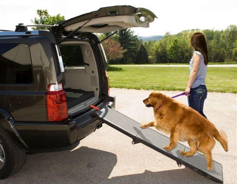 rampa de perro para los coches