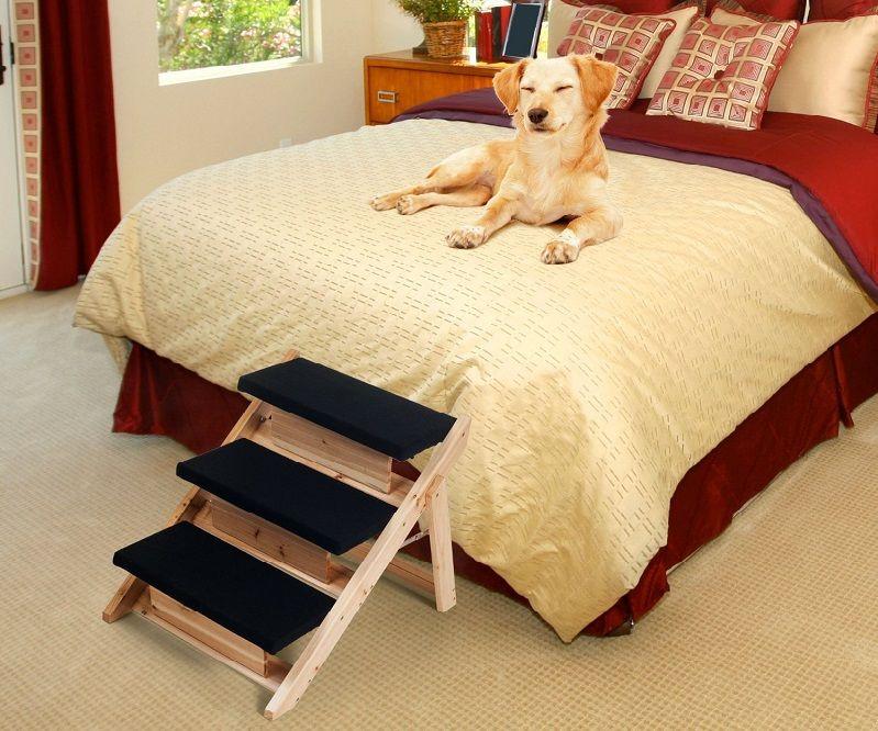 Beneficios de perro en escalera