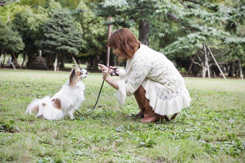 Señora entrenar a su perro