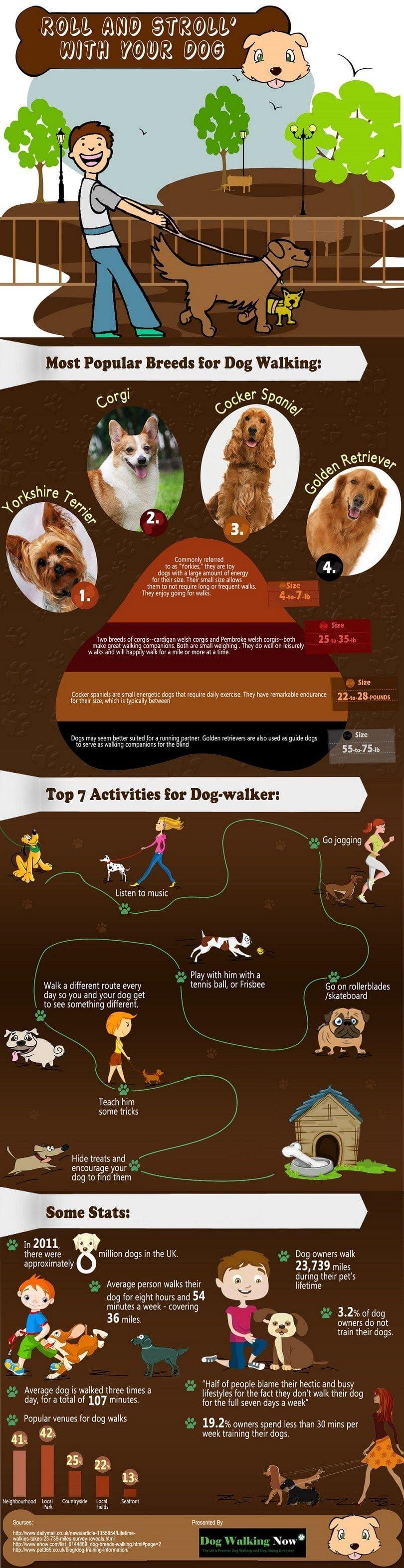 Rollo de paseo con su perro