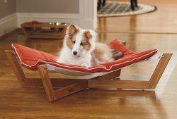 Cómo elegir la mejor cama del animal doméstico para su hamaca perro