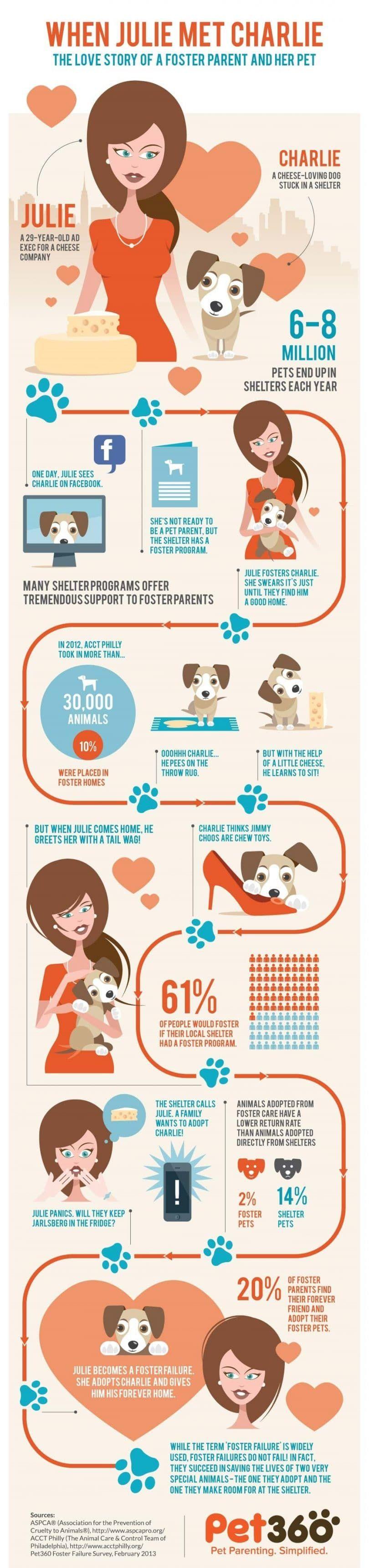 Infografía padre de crianza y el perro