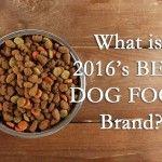 ¿Cuál es la mejor marca de comida para perros - Top 10 alimentos para perros para el perrito