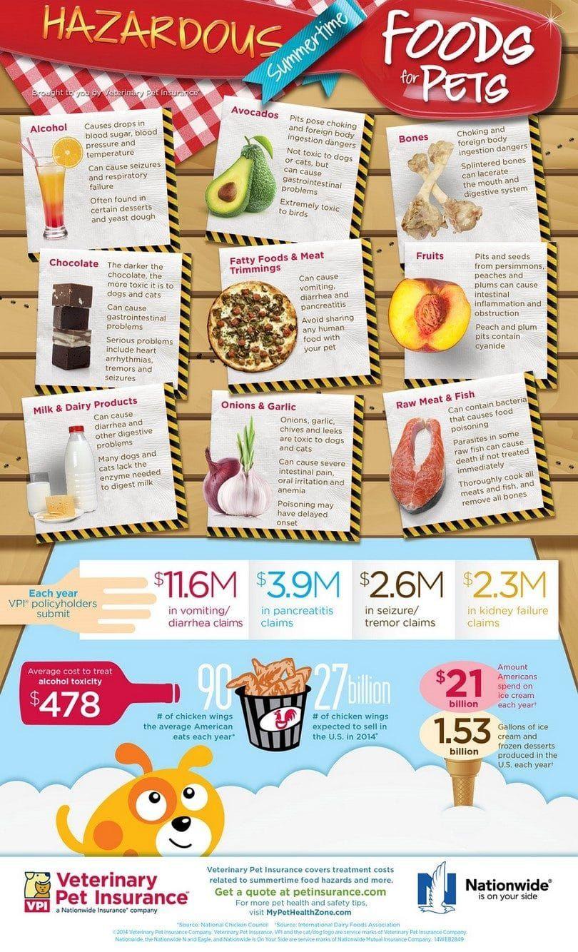 alimentos tóxicos para los perros de infografía