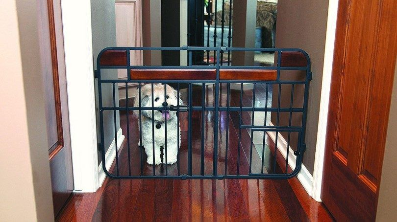 Puerta para perros en casa