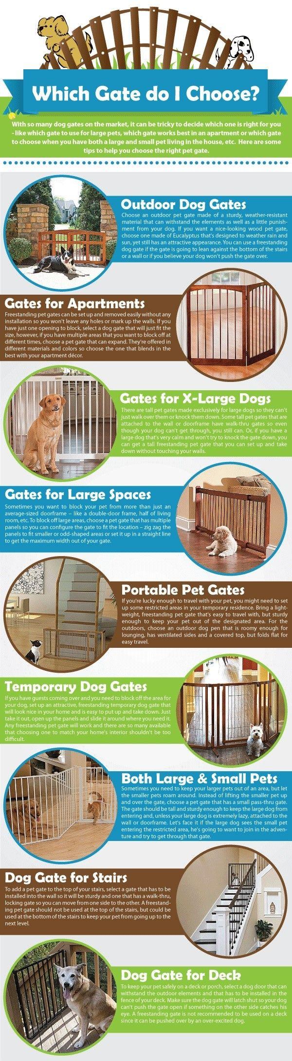 Perro puertas Infografía