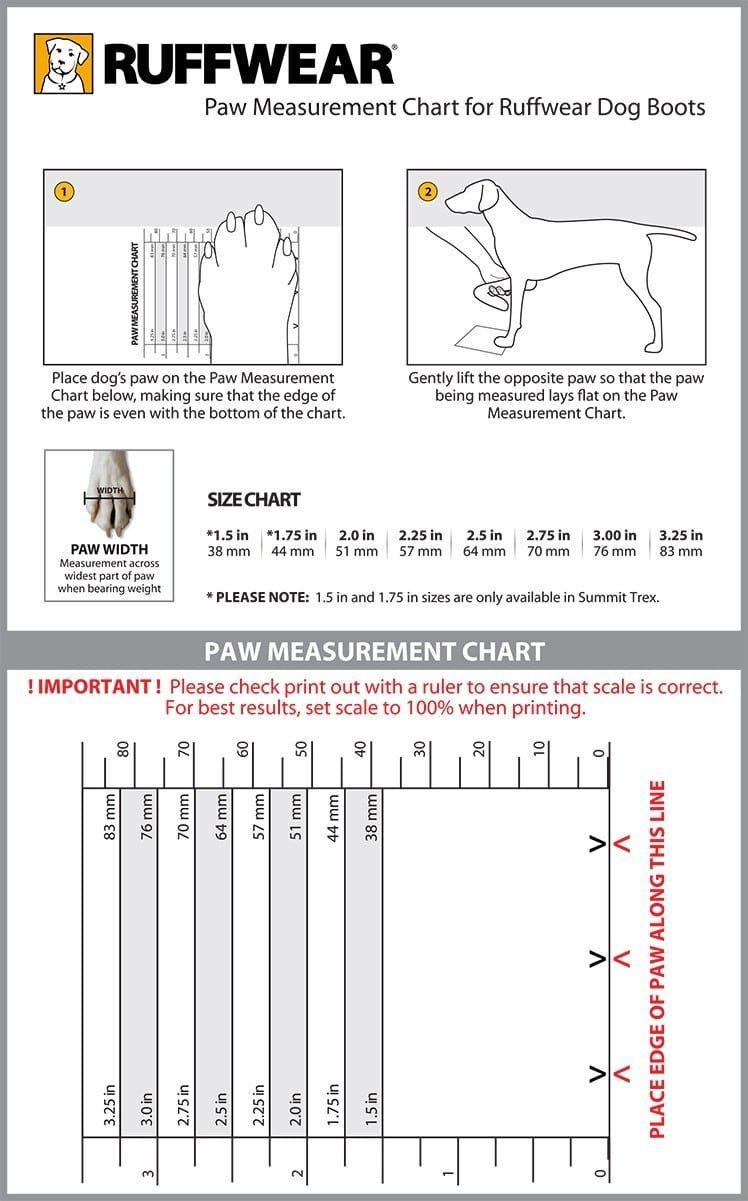 carta de la medida de la pata