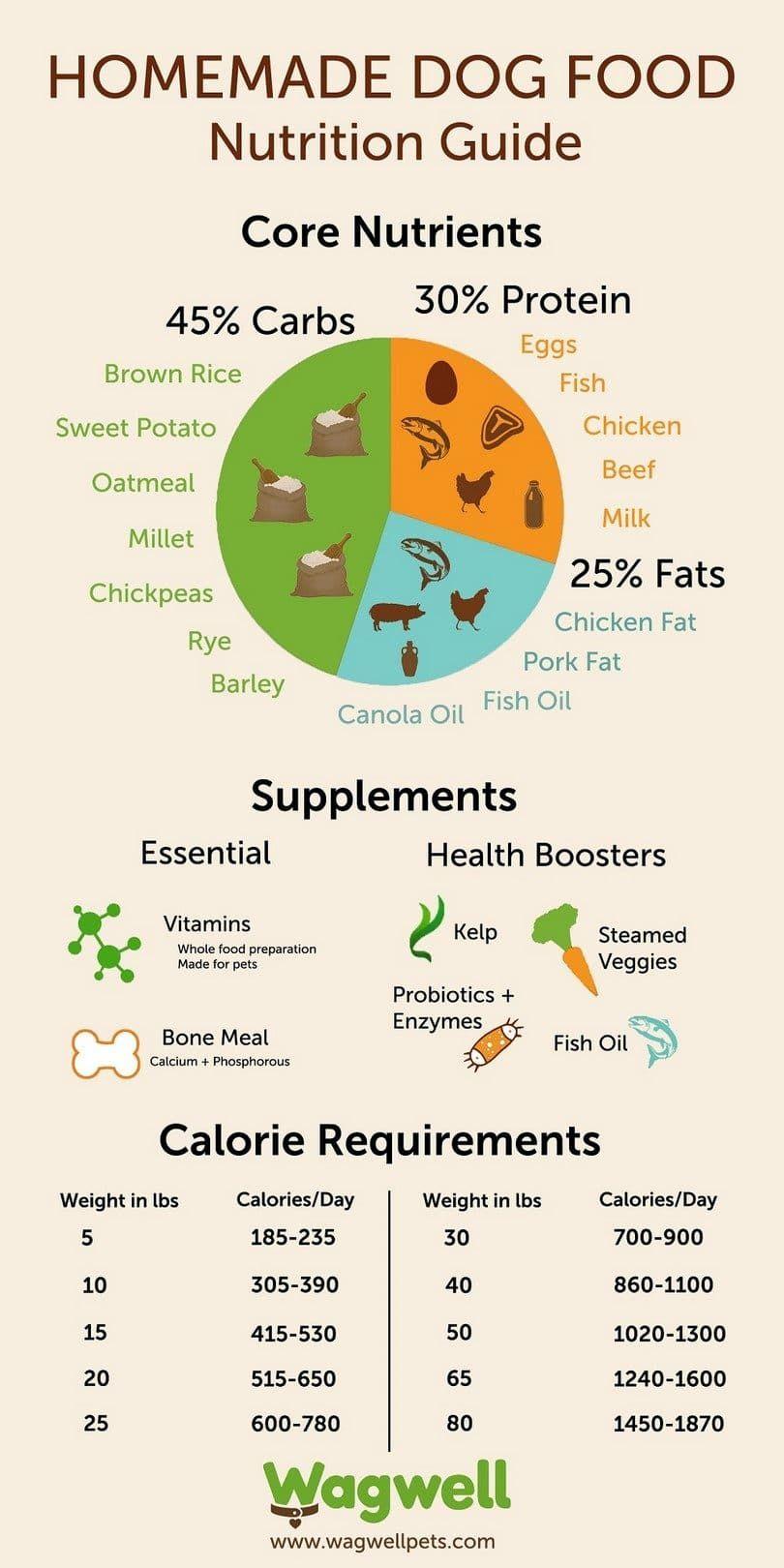 guía de nutrición casera