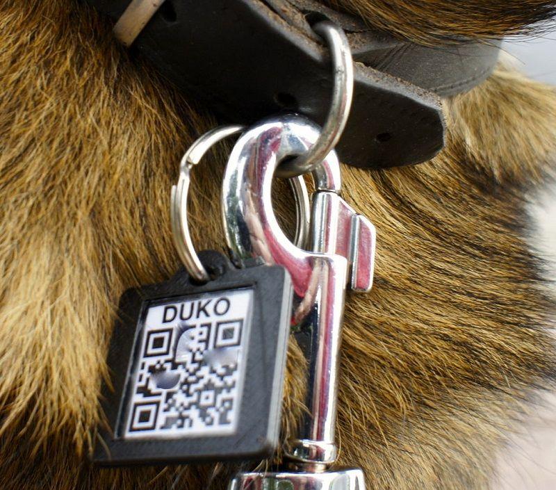 etiqueta de perro QR