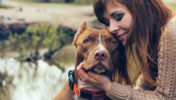 Cynophobia - CГіmo superar el miedo a los perros 2