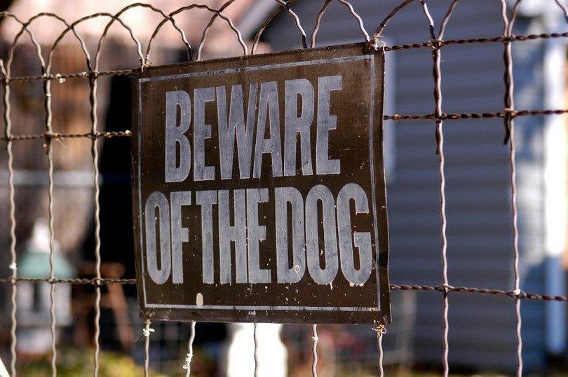 Perro cuidado con signo