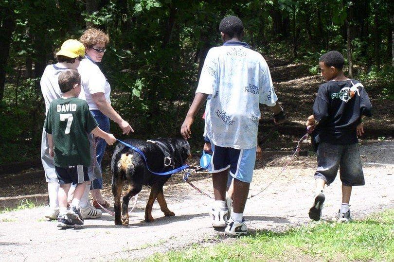 Los niños con miedo a la superación de perro