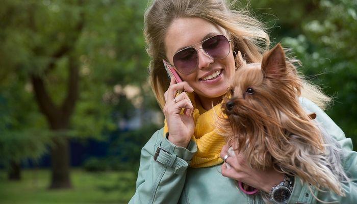 Cómo escoger el mejor perro para usted