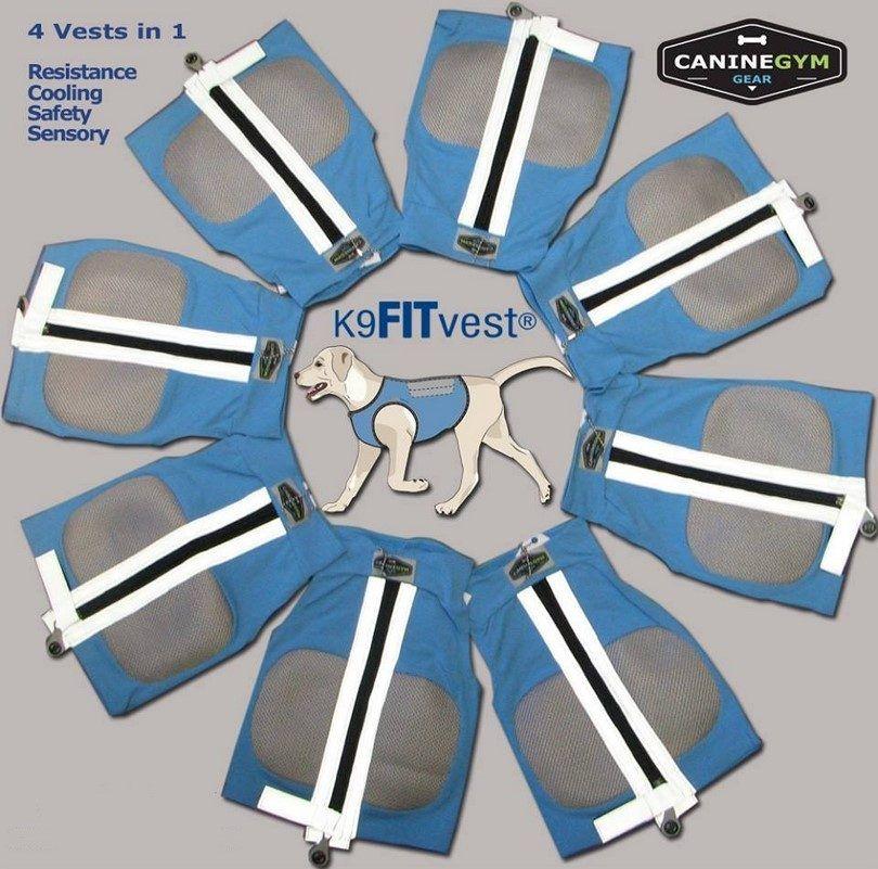 K9FITvest-azul