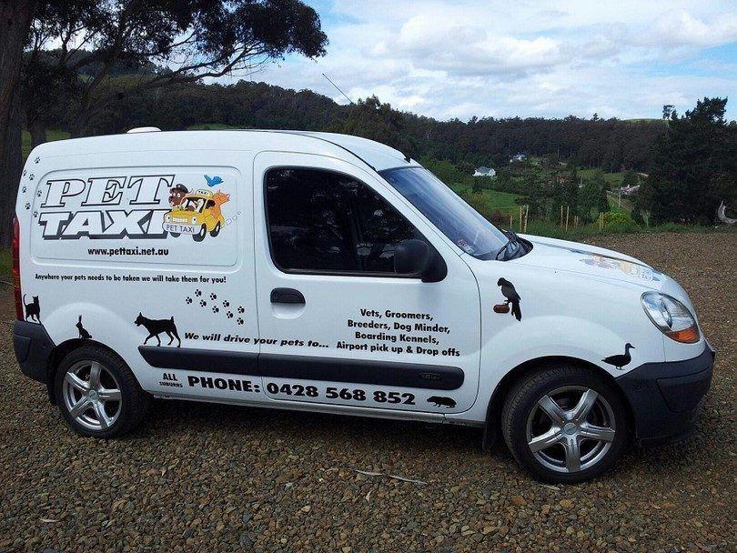 el transporte de taxi perro