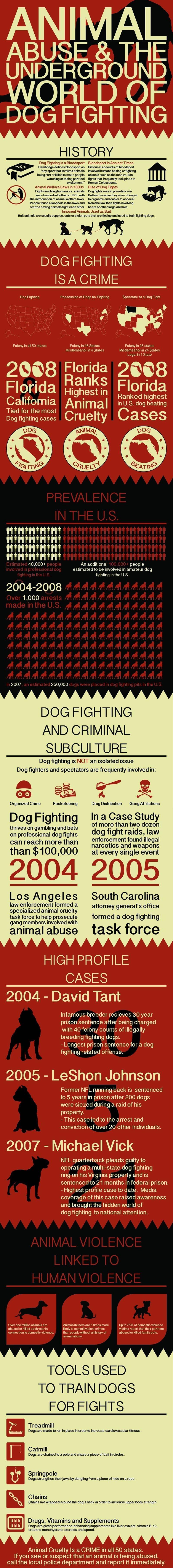 infografía el maltrato animal
