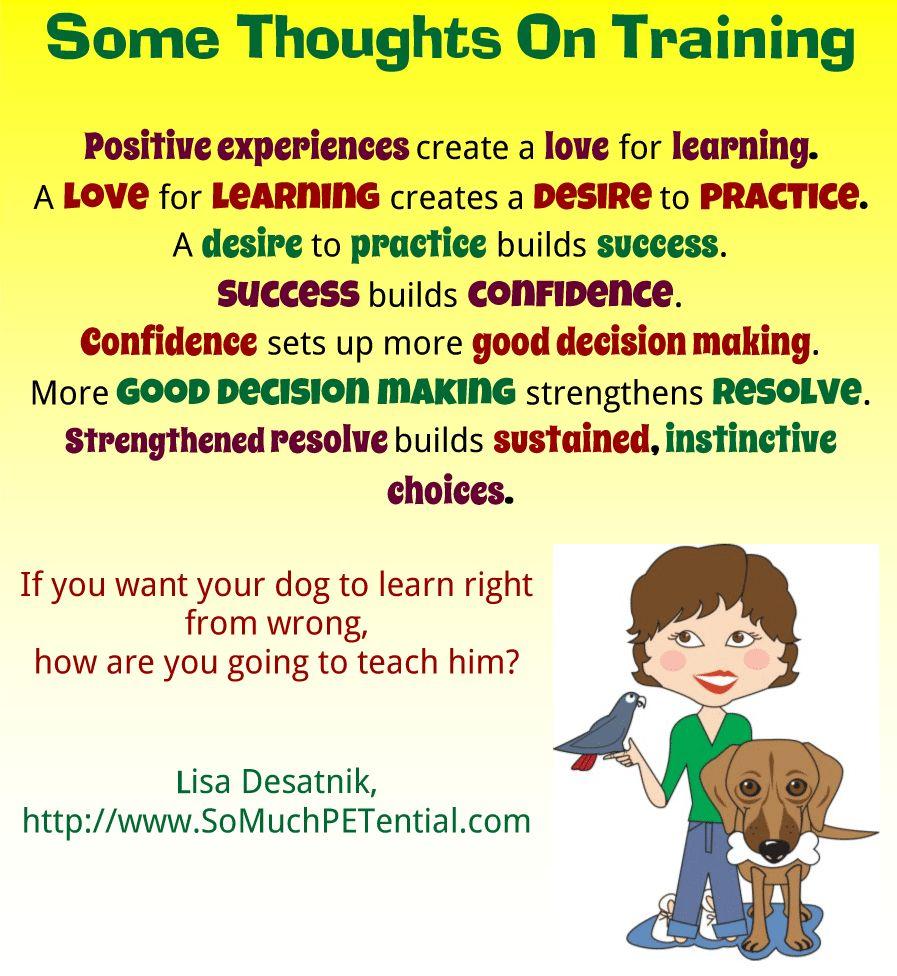 Reflexiones sobre el entrenamiento del perro